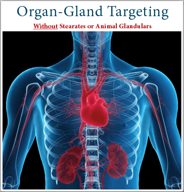 By Organ and Gland