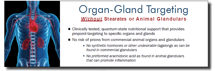 Organ Gland Targeting